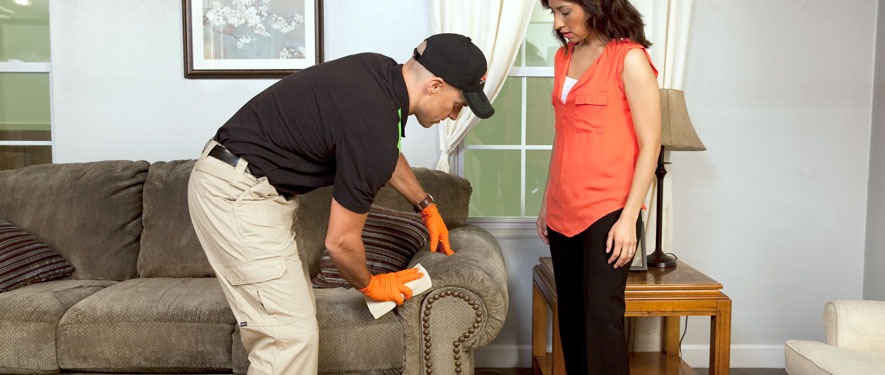 Riverhead, NY carpet upholstery cleaning